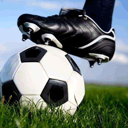 Футбольные чехлы